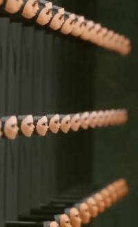 Multiple facial models