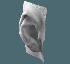 Artec 3D Scanner Model Ear